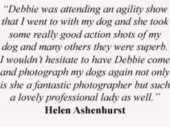 Helen quote copy